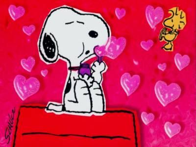 Snoopy 33